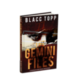 gemini files.png