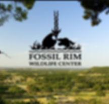 fossil rim.JPG