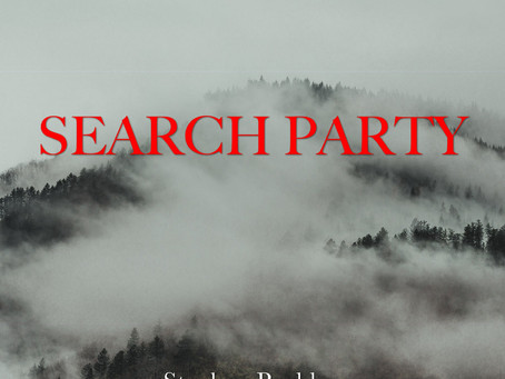 Single Review: Stephen Roddy - Search Party