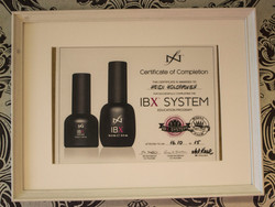 IBX system todistus