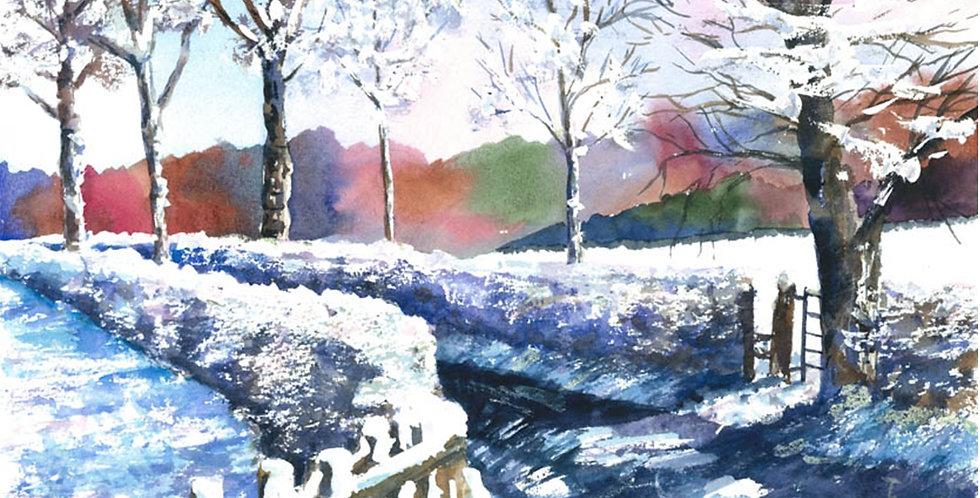 Snow Winter Christmas Trees Mountains