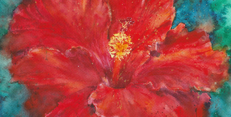 hibiscus red flower floral plants nature bouquet