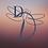 DragonFly Initials Logo DragonFly Logo.p