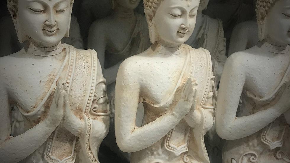 Indian Buddha Praying/Kneeling