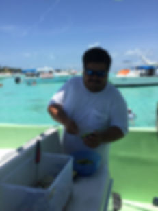whale sharks isla mujeres mexico