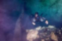 Cenote Diving Playa del Carmen Mexico Tulum Cancun Scuba Diving Halocline