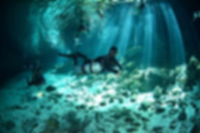 Cenote Diving Playa del Carmen Mexico Tulum Cancun Scuba Diving