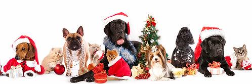 Happy Holidays Box - Luxury