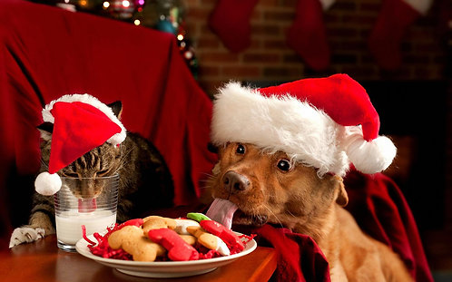 Happy Holidays Box - Premium