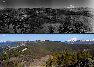 Bethel Ridge SW Cropped Comparison.jpg