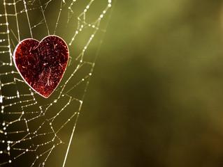 Beware of the Nettie Heart