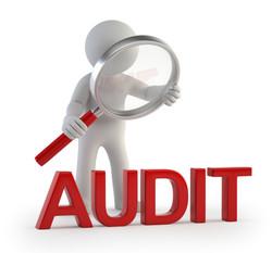HR Audit & Evaluation