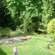Back Yard and Lower Pond
