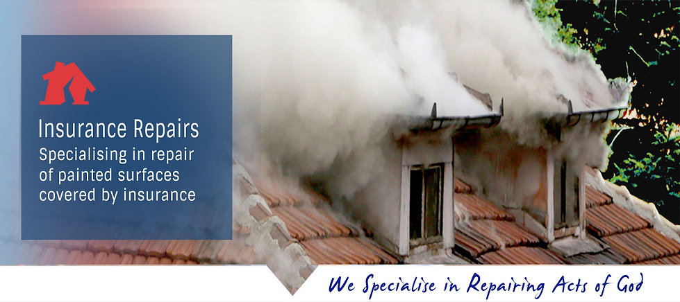 Insurance repairs painting service