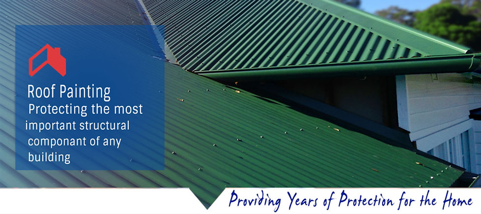 Tauranga's professional roof painters