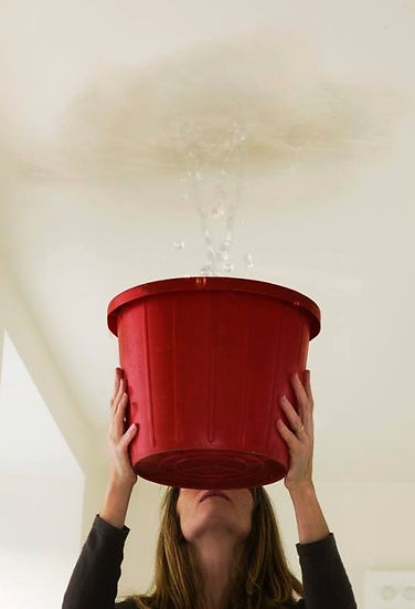 We repair and re-paint water damaged services