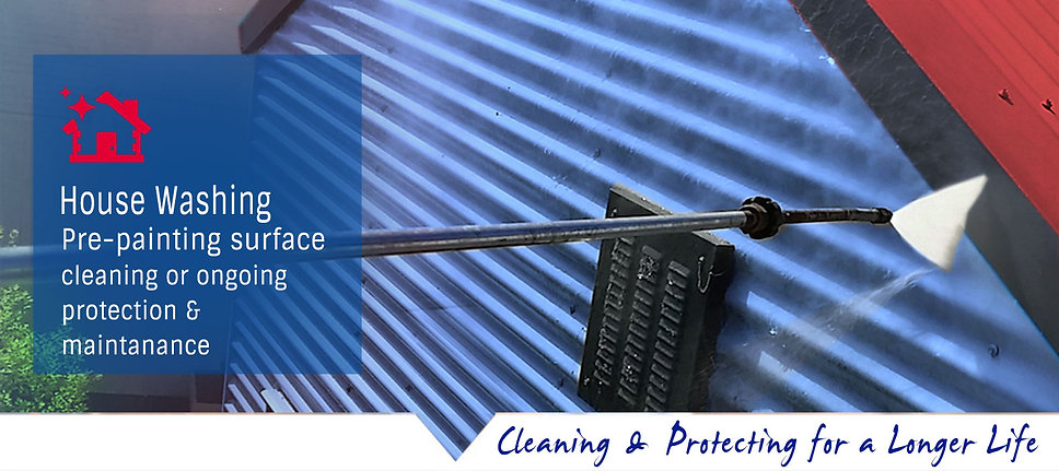 Professional house washing service