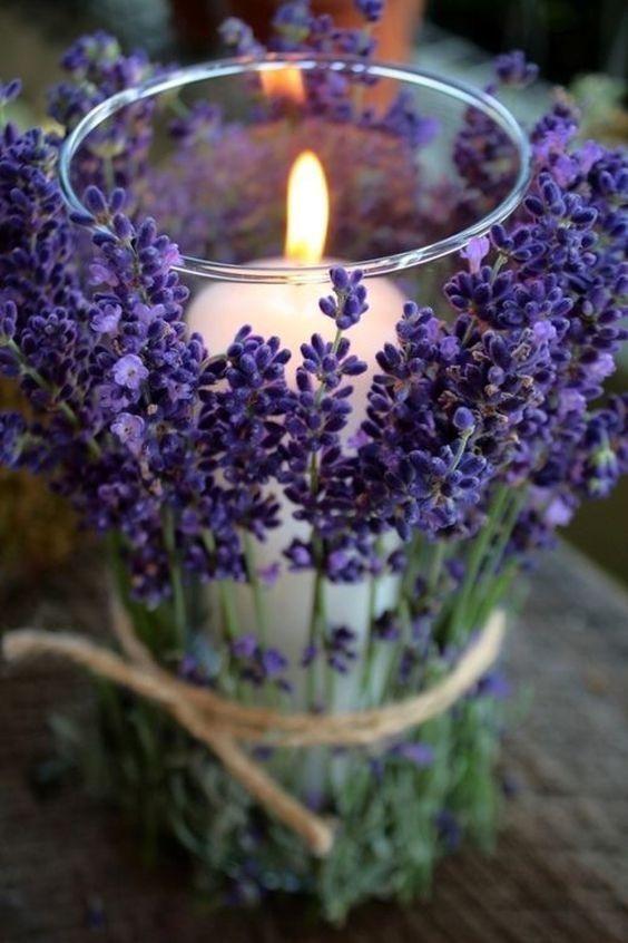 lavender ultra violet