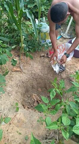 O CEV NÃO PARA! As famílias continuam preparando a terra orgânica.
