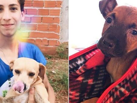 Desde os 9 anos adolescente resgata animais de rua e hoje tem o próprio abrigo