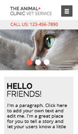Pets & Animals website templates – Animal Clinic