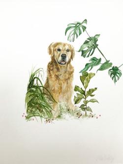 Sam & foliage