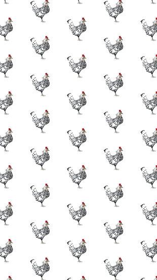 A whole lotta... Chickens