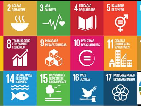 Os Objetivos de Desenvolvimento Sustentável (ODS´s) da Agenda 2030