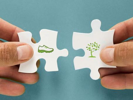 O que é Ecodesign? Princípios, Vantagens e Exemplos