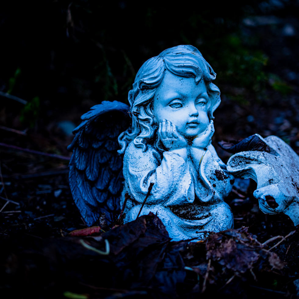 Angel with broken wings - seems very symbolic.