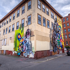 Incredible mural by Portugese artist Bordalo II in Lynn. I love that this building seems to be condemned.