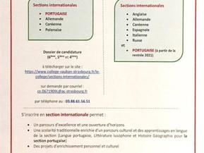 Sections Internationales à Strasbourg