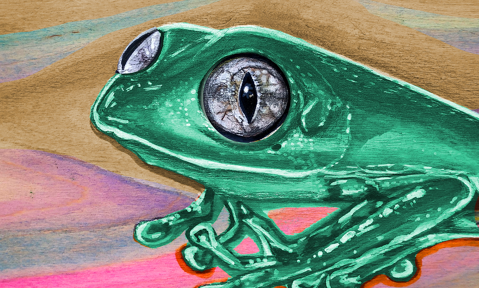 Spirit Animal Painting - Frog