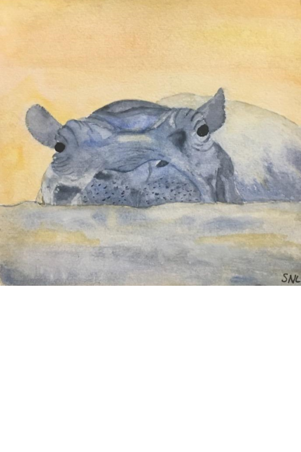 Picture 4 x 6  hippo.png