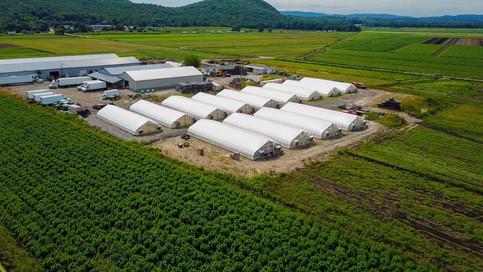 Goshen Farms.jpg