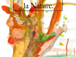 C'est toute une histoire avec la nature que je parcours depuis de nombreuses années.