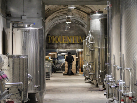 Piquentum - an authentic wine experience