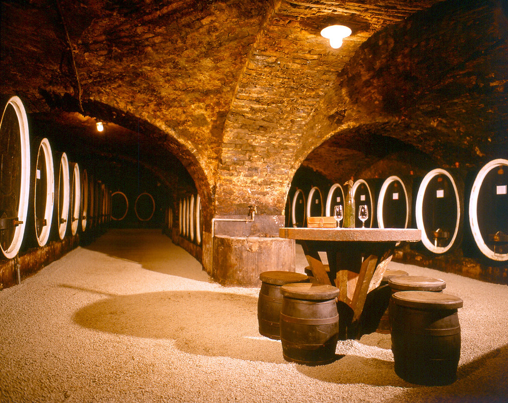 Kutjevo cellars