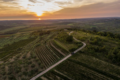 Aerial view - Clai Winery