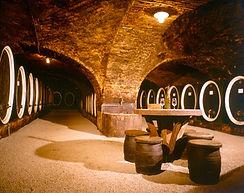 Croatian wine cellar