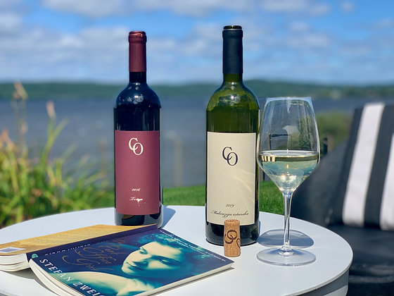 Croatia 2.0 - Webinar & Wine