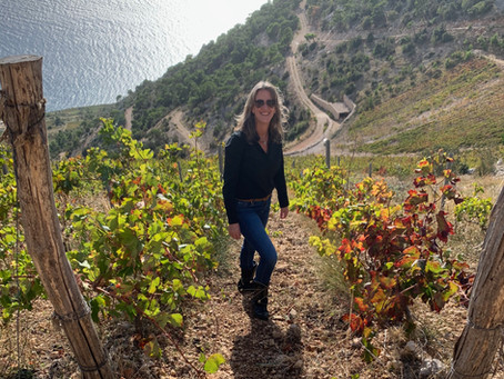 Croatia Unpacked featured by The Circle of Wine Writers