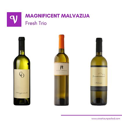 Magnificent Malvazija Fresh Trio