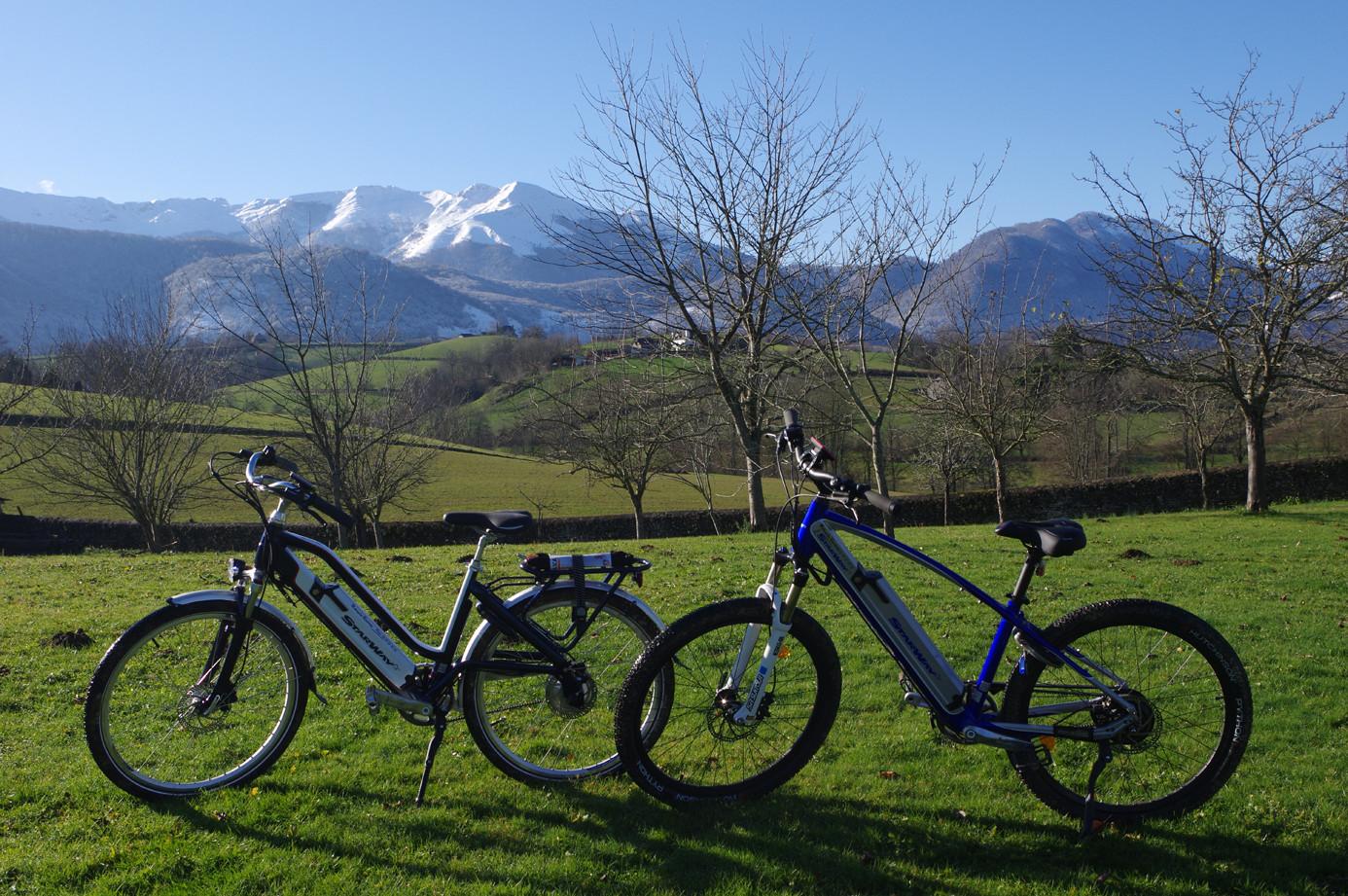Location de vélos électriques
