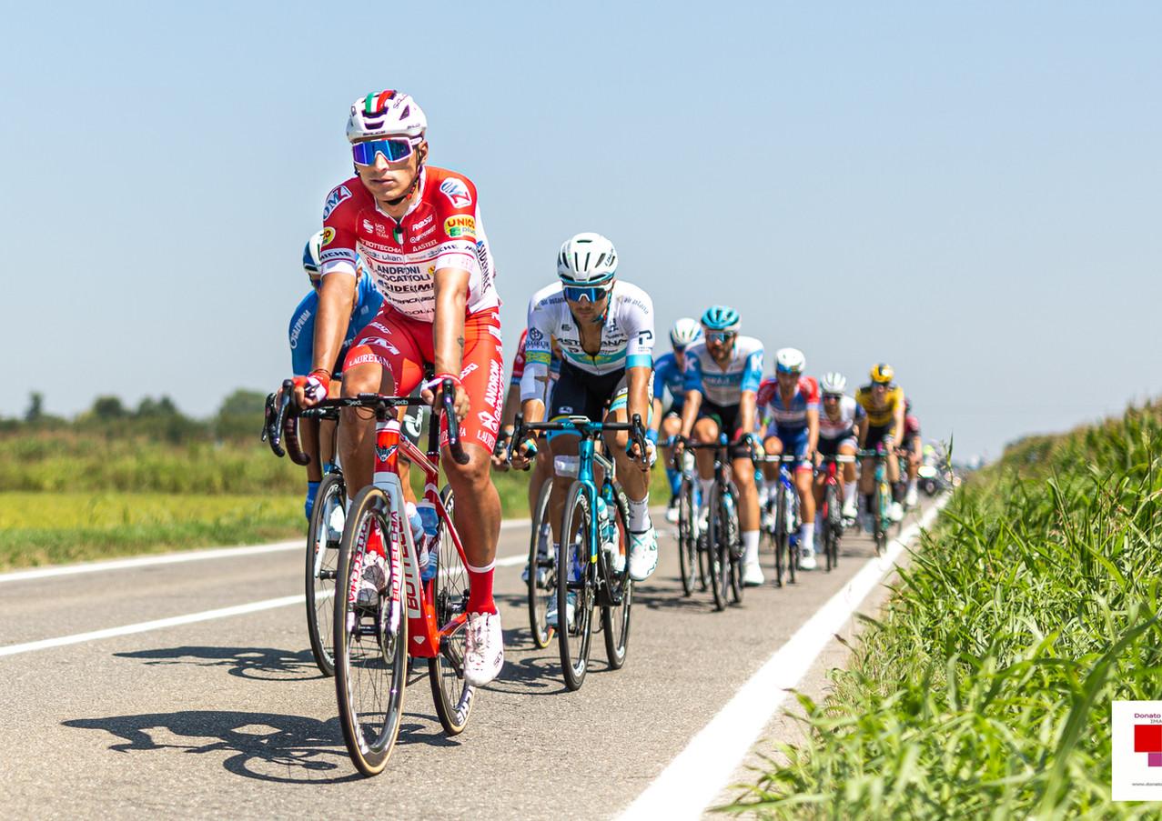 Milano Sanremo 2020 | UCI World Tour