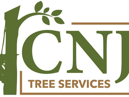 At long last, the website is live! www.cnjtreeservices.co.uk is ready. More to to come soon!