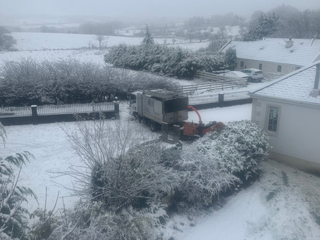 Machinery breakdowns, Snow and Covid
