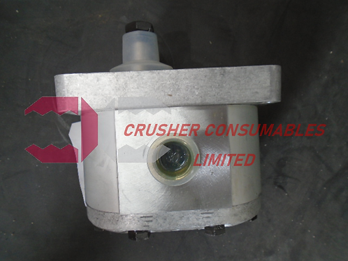 30C20X190HG Pump | CAPRONI