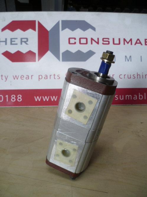 1PX150-1PX250A Tandem pump (77169)