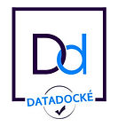 Picto_datadocke-278x300.jpg